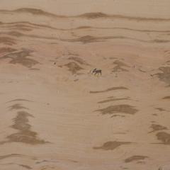 Мрамор Acero antica(Ачеро антика)